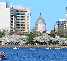 U.S.Capitol and Tidal Basin by Matsumoto