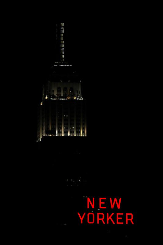 New Yorker by Steiner62
