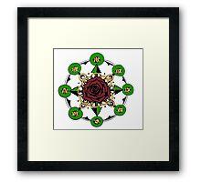 Compass Rose Framed Print