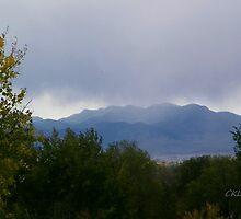 Denver to Mount Evans by Fareday