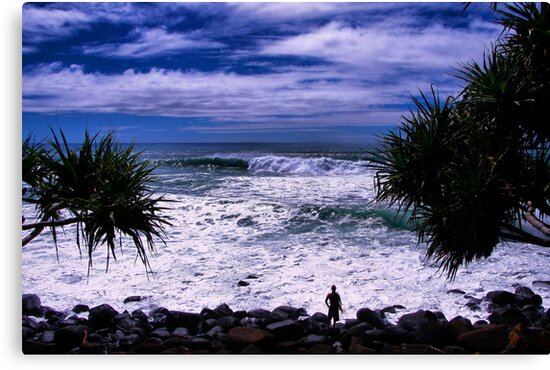 Surfer At Burleigh Headlands  by Nickie