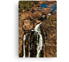 A Dribble of Water Canvas Print