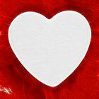 Bleeding Heart by Nicolas Raymond