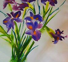 The beautiful iris by Margaret Morgan (Watkins)