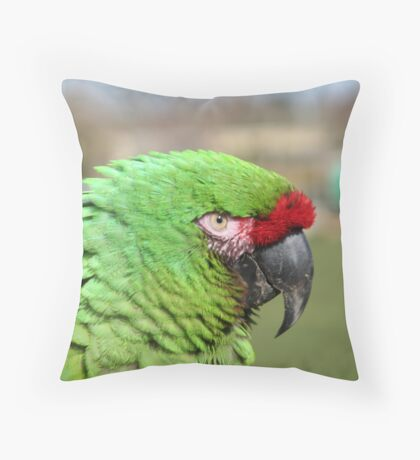 Macaw Throw Pillow