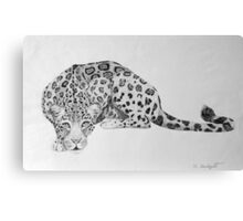 Jaguar Canvas Print