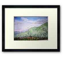 Summer  at  Mt.Feathertop  Framed Print