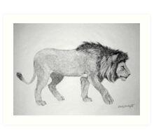 Lion #2 Art Print