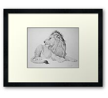 Lion #1 Framed Print