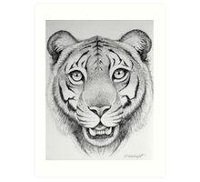 Tiger Head Art Print