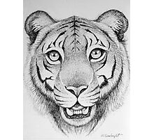 Tiger Head Photographic Print