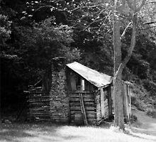 My Old Kentucky Home by Pamela Tackett