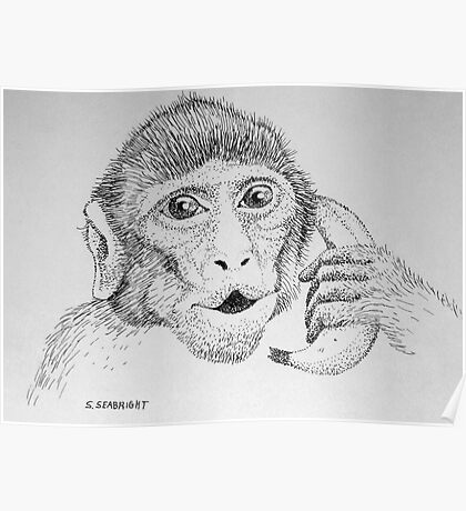 "Monkey on ""Phone"" Poster"