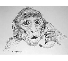"Monkey on ""Phone"" Photographic Print"