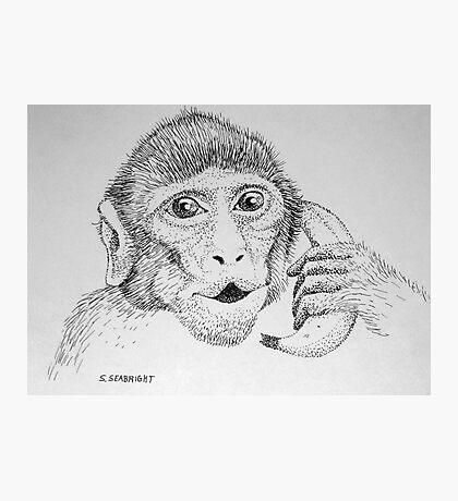 "Monkey on ""Phone"" Photographic Print"