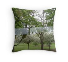Through the reflections Throw Pillow