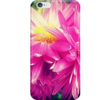 Chrysanthemums for Mother's Day. iPhone Case/Skin