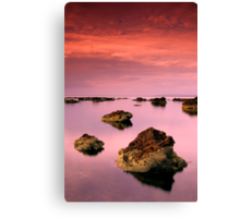 Pelican Point Canvas Print