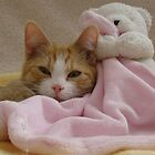 My Teddy & Me by Susan Vinson