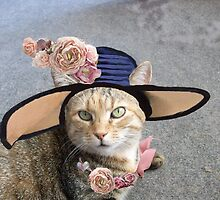 PRINCESS TATUS / ELEGANT CAT WITH DIVA HAT AND PINK ROSES  by BulganLumini