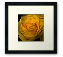 Yello Framed Print