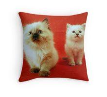 Follow me!!! Throw Pillow
