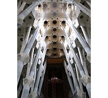Gaudi Abstract Columns and Ceiling Photographic Print