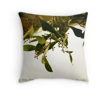 Rumi 1 Throw Pillow