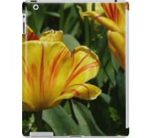 Golden Tulips iPad Case/Skin