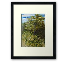 Moraksan on a Windy Day Framed Print