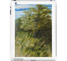 Moraksan on a Windy Day iPad Case/Skin