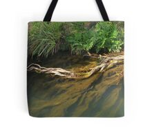 Beneath the surface II Tote Bag