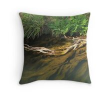Beneath the surface II Throw Pillow