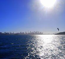 Sydney Harbour Skyline by Catherine Sherman