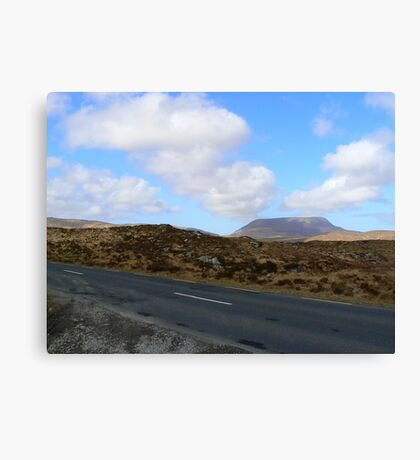 Donegal Road Canvas Print
