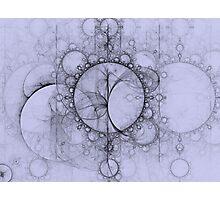 Fractal Effervescence Photographic Print