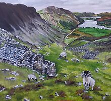 The Scottish Highlands by wend06