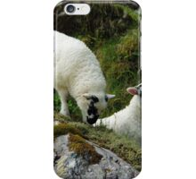Roadside Lambs iPhone Case/Skin