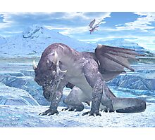 Ice Dragon Photographic Print