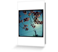 spring cherry tree ttv Greeting Card