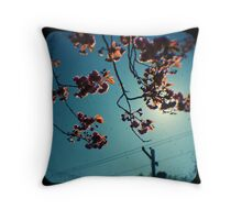 spring cherry tree ttv Throw Pillow