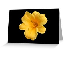 Yellow Flower for cancer day  Greeting Card