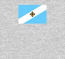 Flag of Madison, Wisconsin  Unisex T-Shirt
