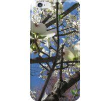 Sakura Onwards iPhone Case/Skin