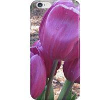 Fuchsia Fantasy iPhone Case/Skin