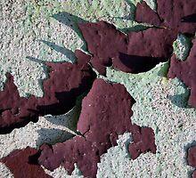 Grape Skins by Nicole Gesmondi