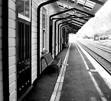 End of the Line by Tara Lemana