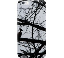 Duck Silhouette  iPhone Case/Skin