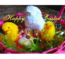 Happy Easter,  Photographic Print