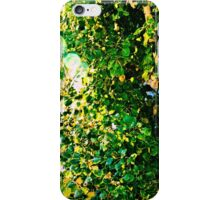 Sunshine and Greenery iPhone Case/Skin